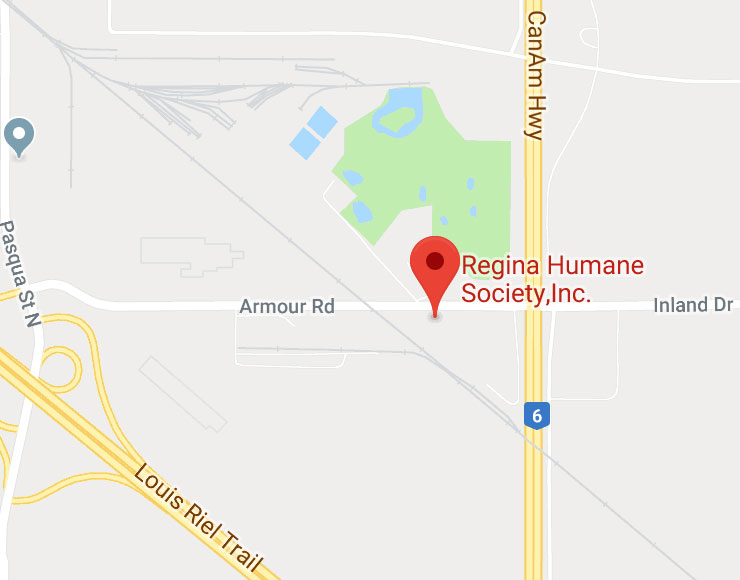 Regina Humane Society Inc - Animal Adoption, Rescue and Shelter