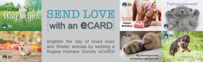 eCard – General