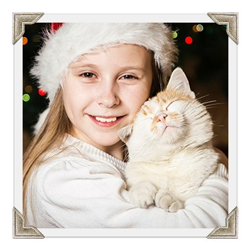 Sponsored Cat Adoption