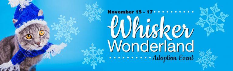 Whisker Wonderland